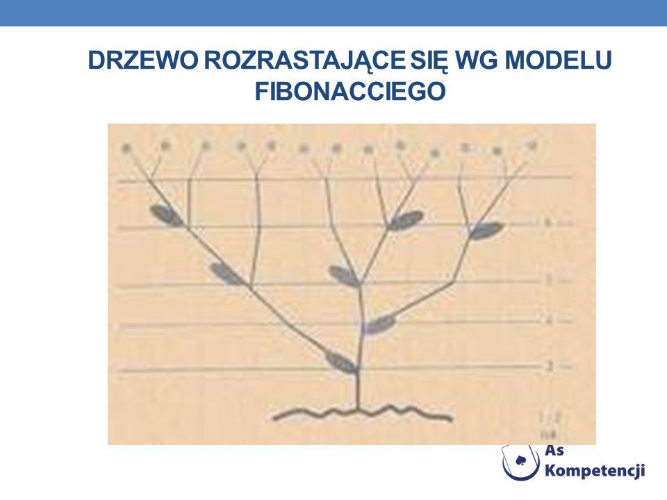 Drzewo rozrastające się wg modelu fibonacciego