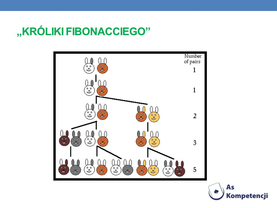 """kRóliki Fibonacciego"