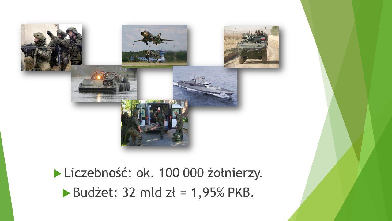 Liczebność: ok. 100 000 żołnierzy.