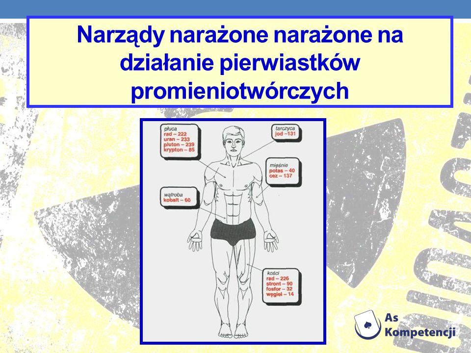 Narządy narażone narażone na działanie pierwiastków promieniotwórczych