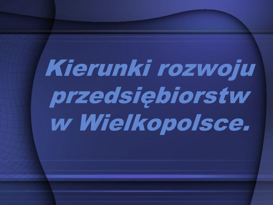 Kierunki rozwoju przedsiębiorstw w Wielkopolsce.