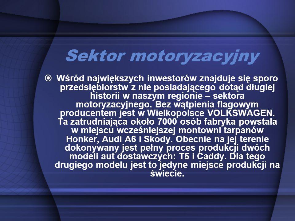 Sektor motoryzacyjny