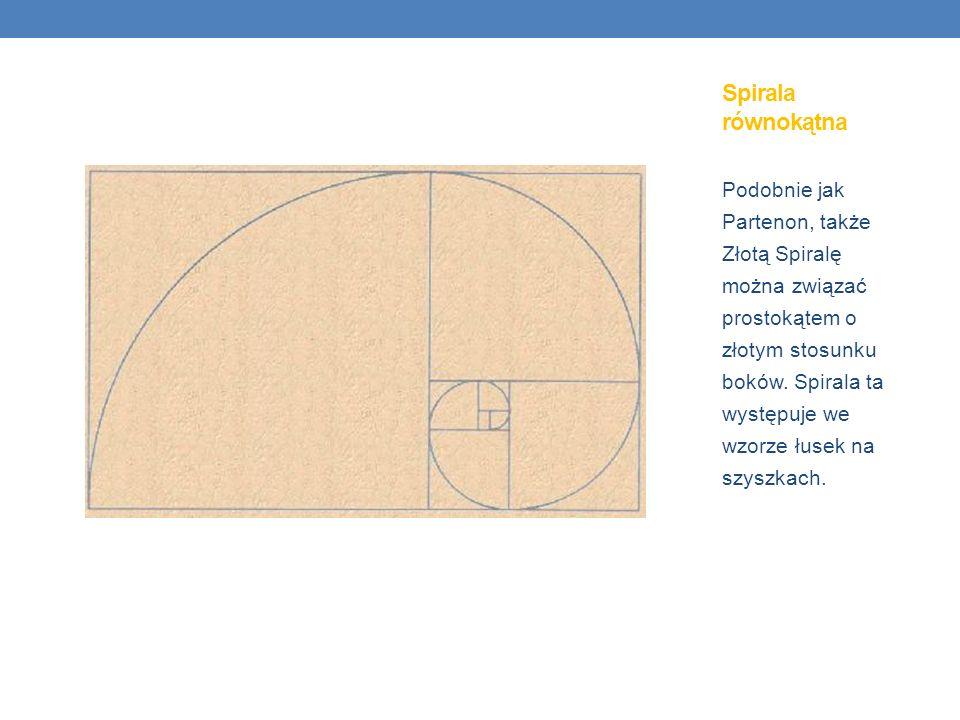 Spirala równokątna