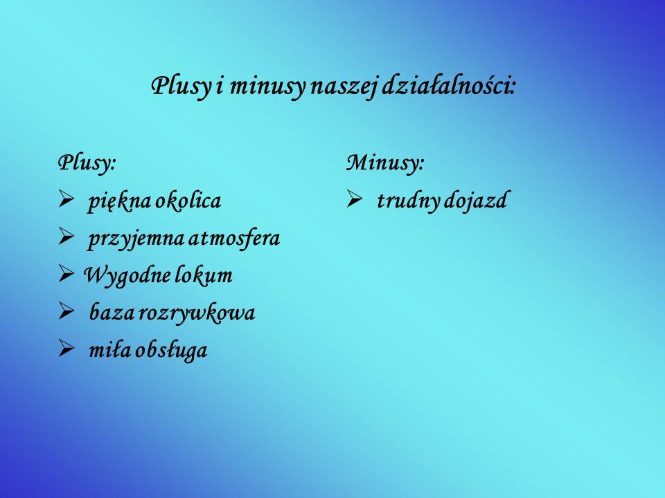 Plusy i minusy naszej działalności: