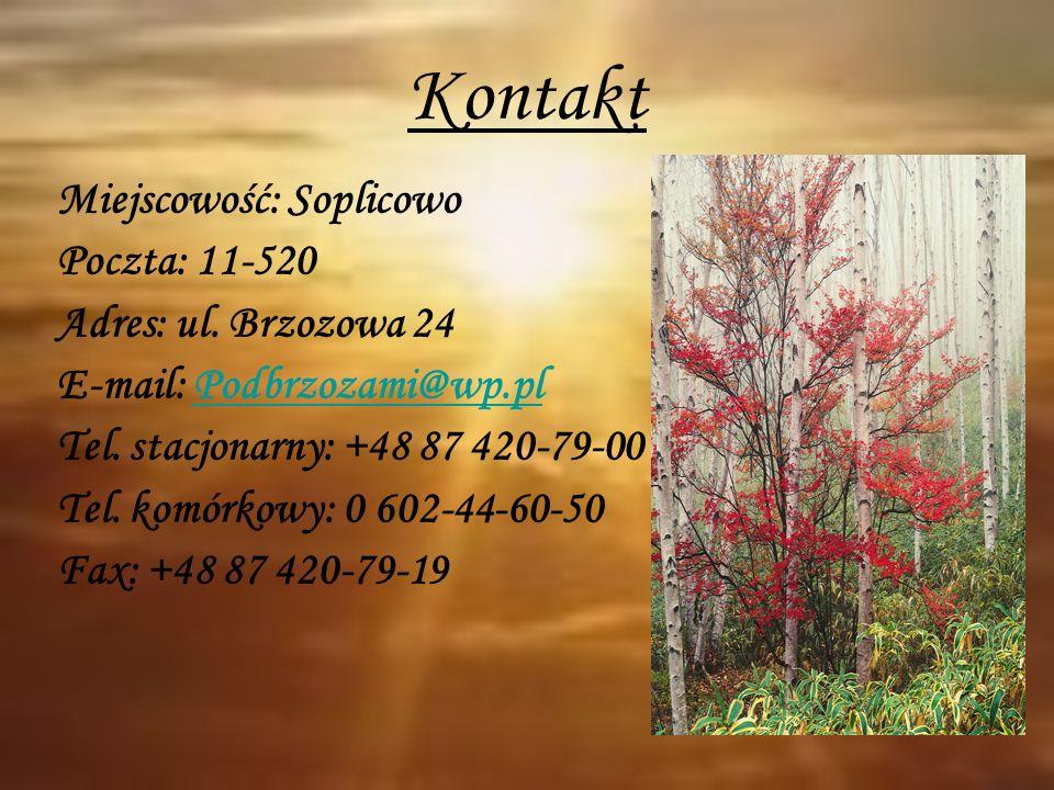 Kontakt Miejscowość: Soplicowo Poczta: 11-520 Adres: ul. Brzozowa 24