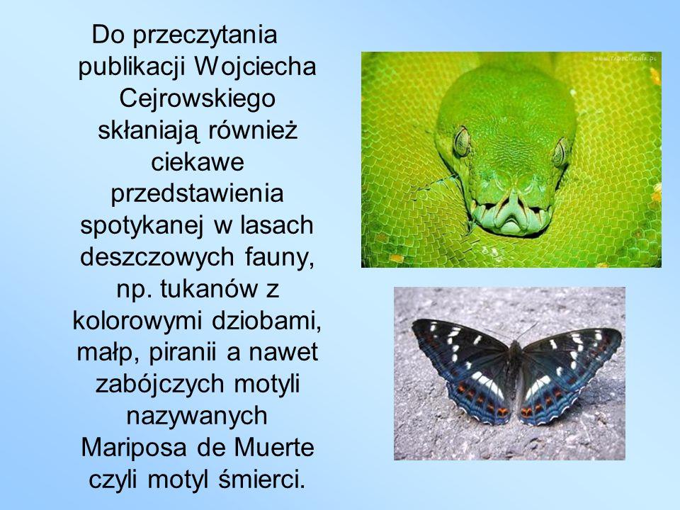 Do przeczytania publikacji Wojciecha Cejrowskiego skłaniają również ciekawe przedstawienia spotykanej w lasach deszczowych fauny, np.