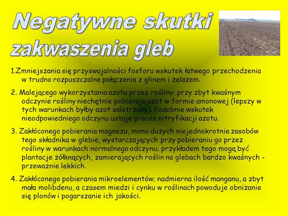 Negatywne skutki zakwaszenia gleb