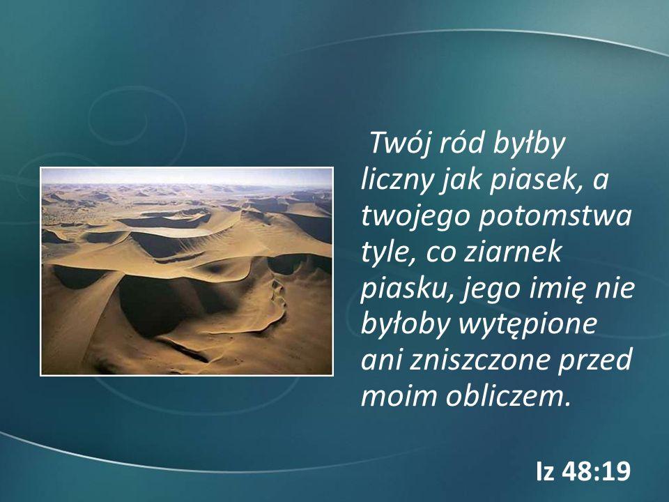 Twój ród byłby liczny jak piasek, a twojego potomstwa tyle, co ziarnek piasku, jego imię nie byłoby wytępione ani zniszczone przed moim obliczem.