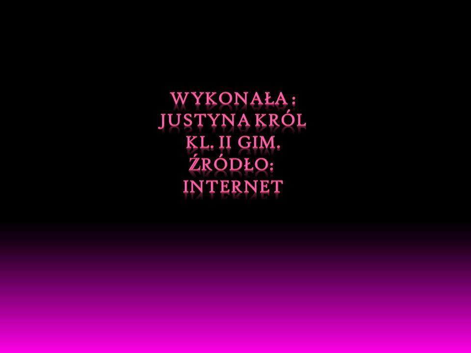 WYKONAŁA : Justyna Król Kl. II gim. źródło: Internet