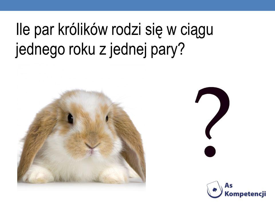 Ile par królików rodzi się w ciągu jednego roku z jednej pary