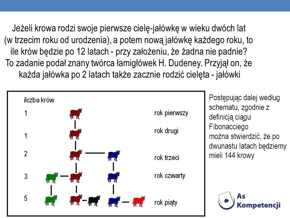 Jeżeli krowa rodzi swoje pierwsze cielę-jałówkę w wieku dwóch lat