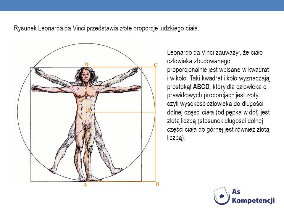 Rysunek Leonarda da Vinci przedstawia złote proporcje ludzkiego ciała.