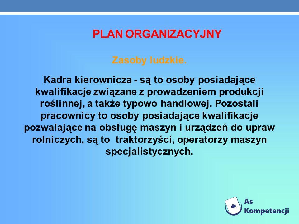 PLAN ORGANIZACYJNY