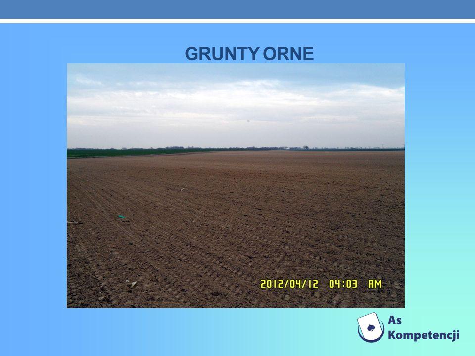 Grunty orne