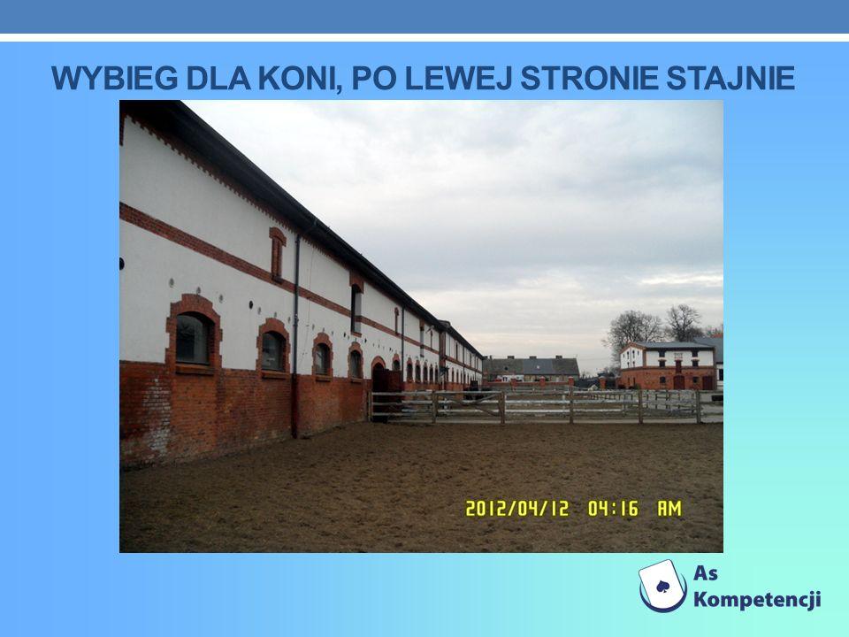wybieg dla koni, po lewej stronie stajnie