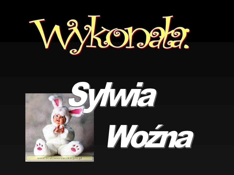 Wykonała: Sylwia Woźna