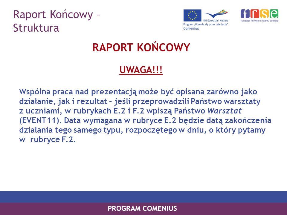 Raport Końcowy – Struktura RAPORT KOŃCOWY UWAGA!!!