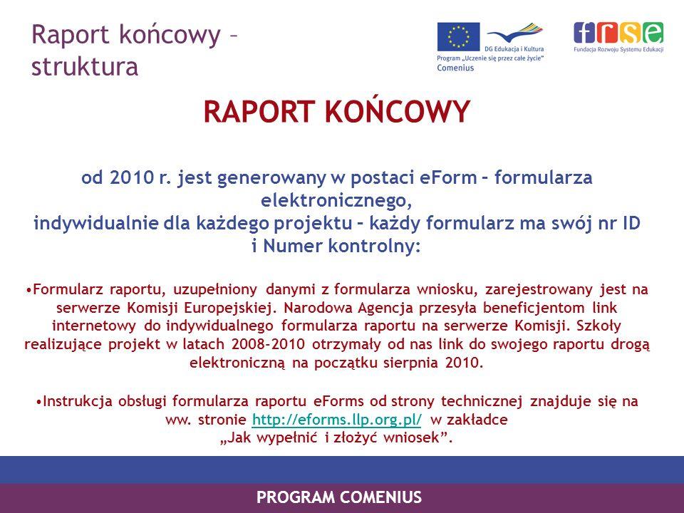 RAPORT KOŃCOWY Raport końcowy – struktura