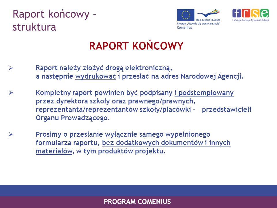 Raport końcowy – struktura RAPORT KOŃCOWY