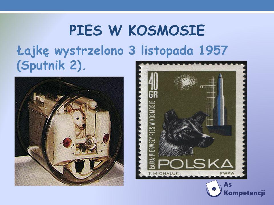 PIES W KOSMOSIE Łajkę wystrzelono 3 listopada 1957 (Sputnik 2).