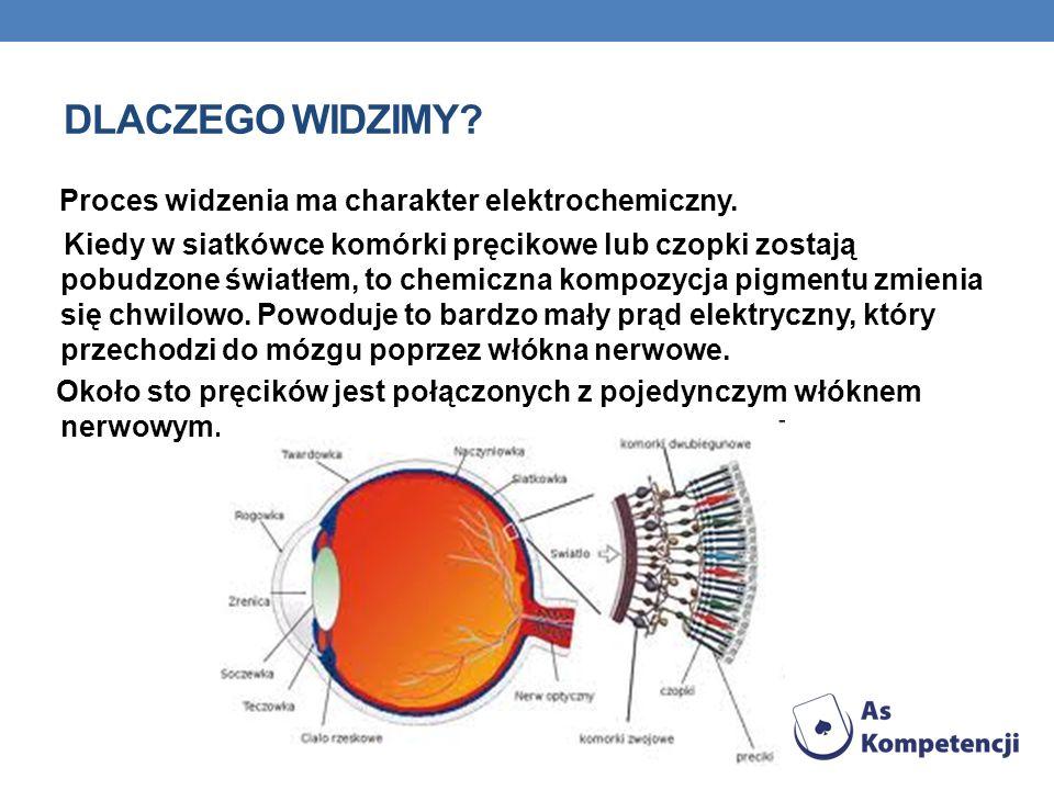 DLACZEGO WIDZIMY Proces widzenia ma charakter elektrochemiczny.