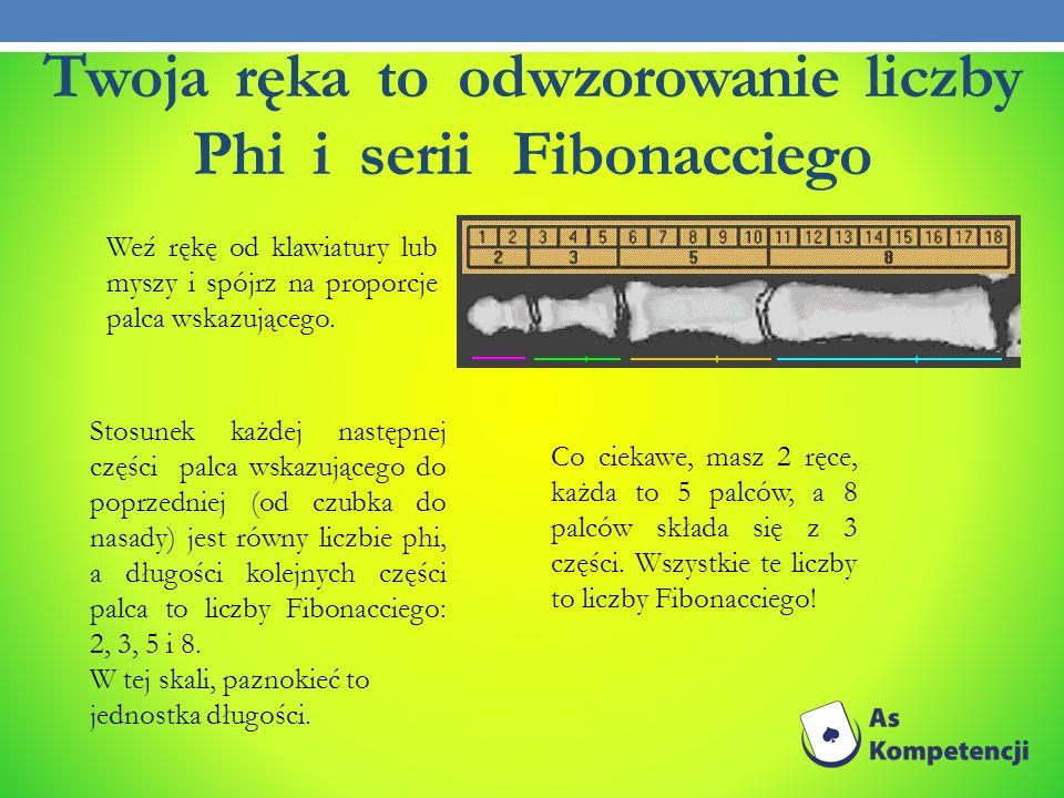 Twoja ręka to odwzorowanie liczby Phi i serii Fibonacciego