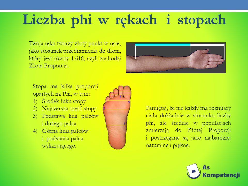 Liczba phi w rękach i stopach