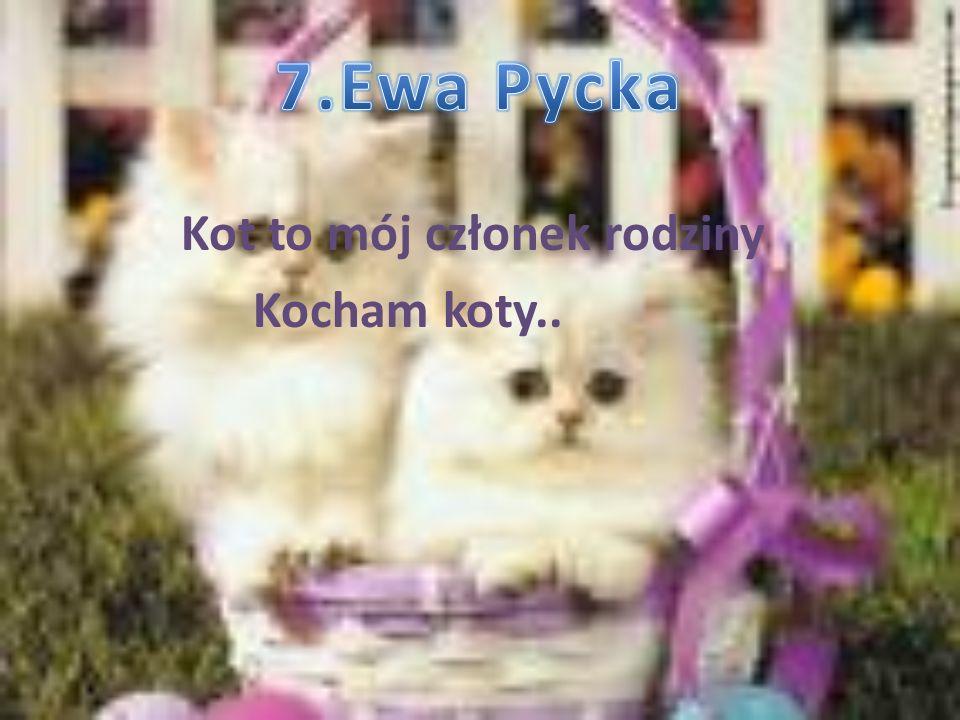 7.Ewa Pycka Kot to mój członek rodziny Kocham koty..
