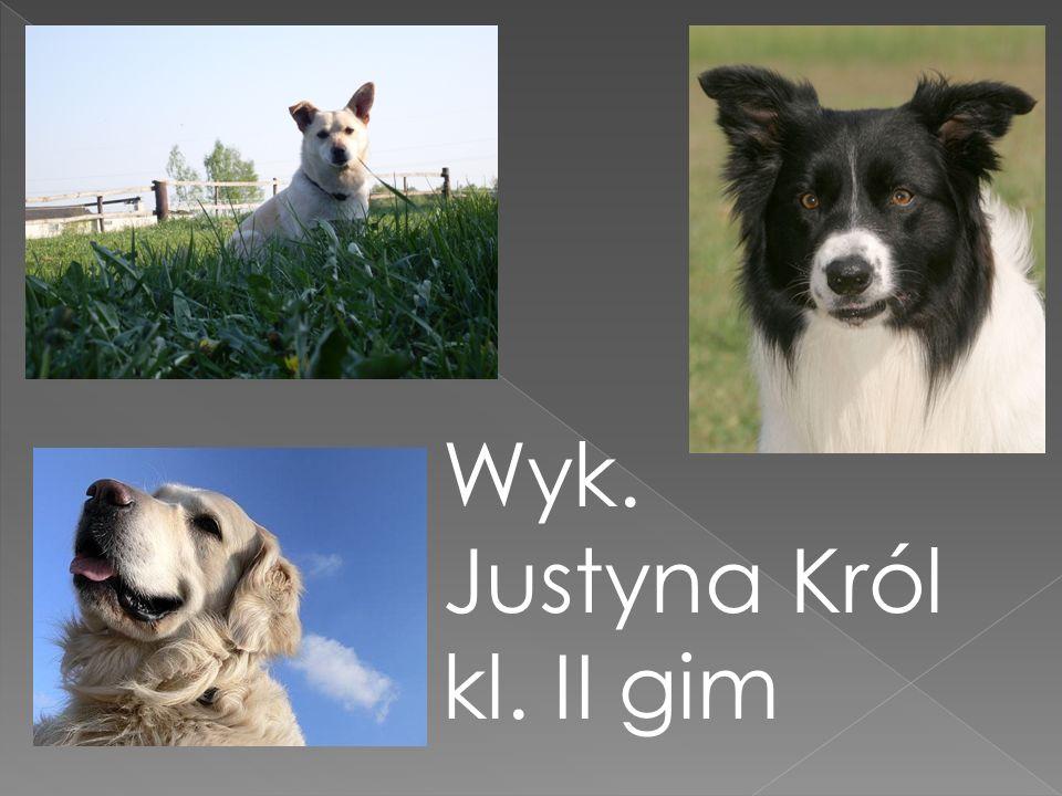 Wyk. Justyna Król kl. II gim
