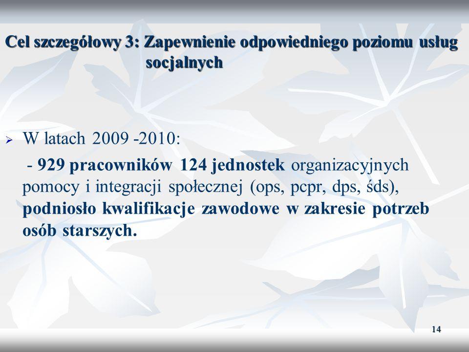 Cel szczegółowy 3: Zapewnienie odpowiedniego poziomu usług socjalnych