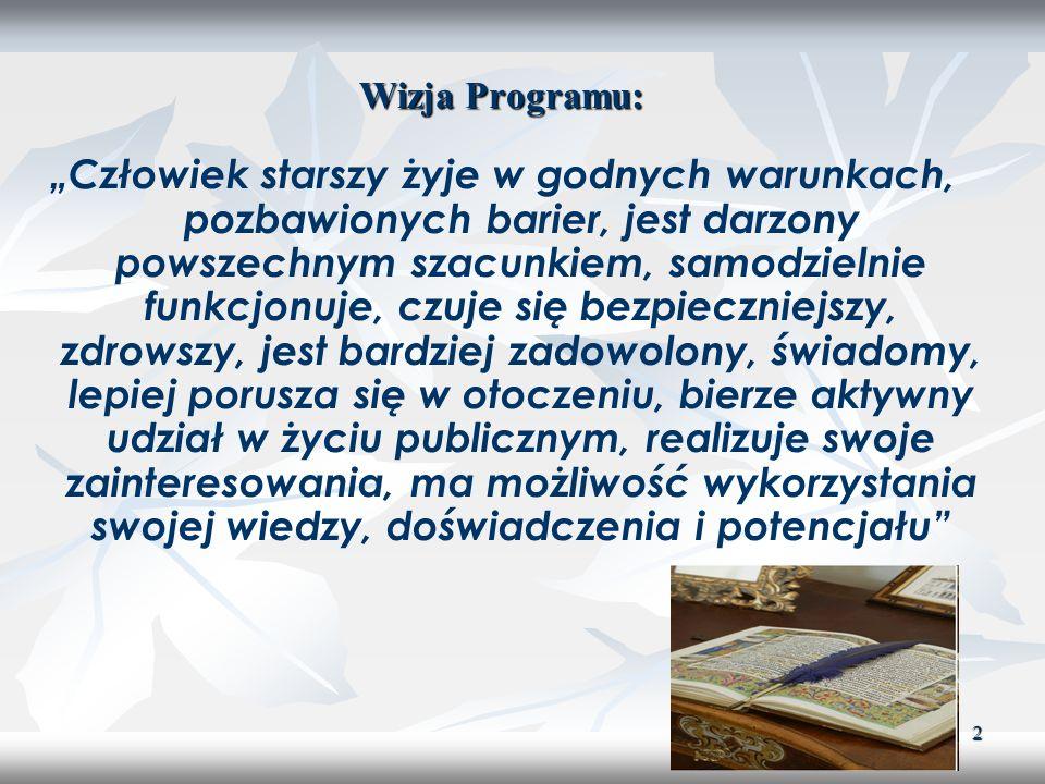 Wizja Programu: