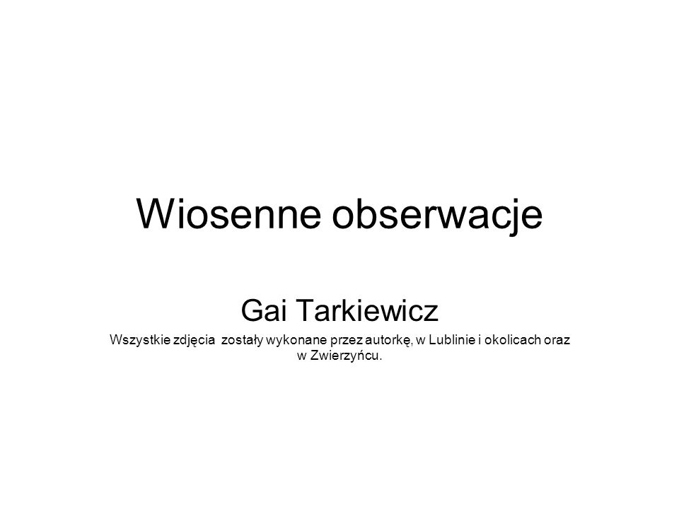 Wiosenne obserwacje Gai Tarkiewicz