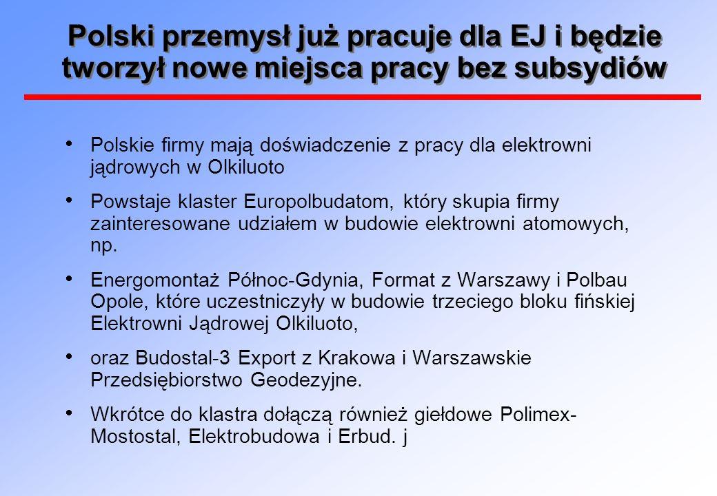 Polski przemysł już pracuje dla EJ i będzie tworzył nowe miejsca pracy bez subsydiów