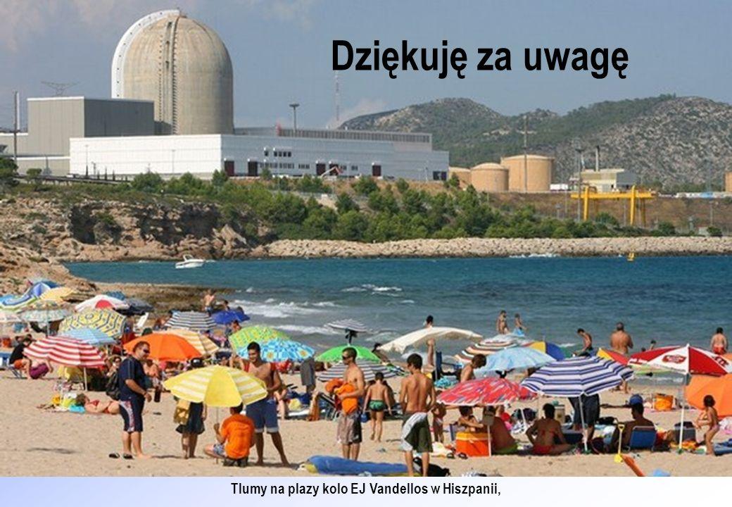 Tlumy na plazy kolo EJ Vandellos w Hiszpanii,