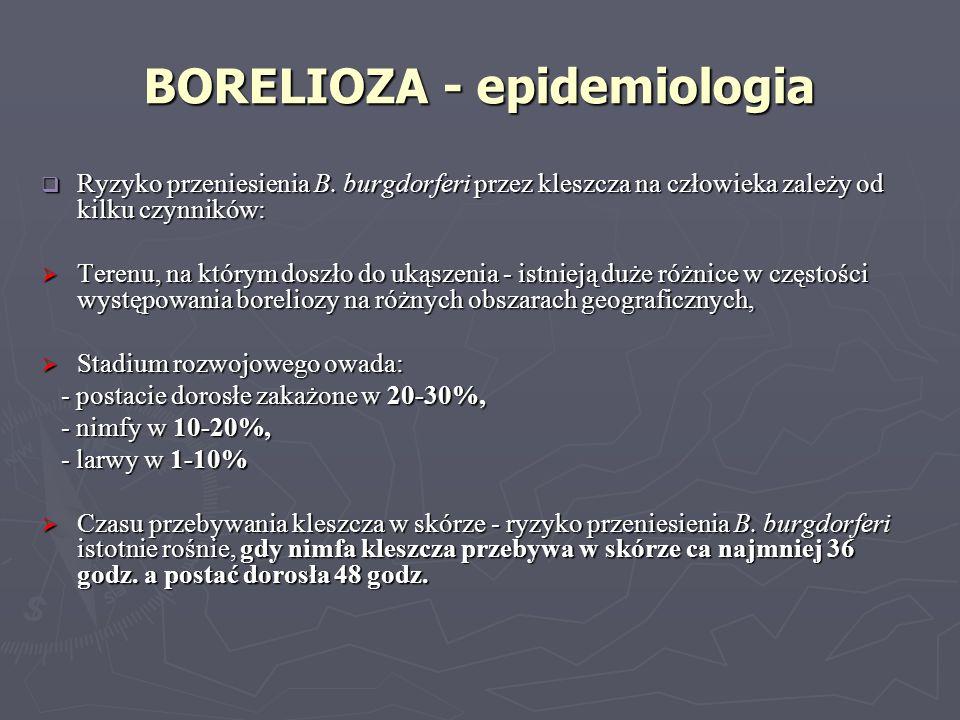 BORELIOZA - epidemiologia