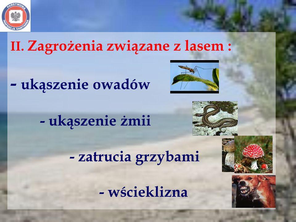 II. Zagrożenia związane z lasem : - ukąszenie owadów. - ukąszenie żmii