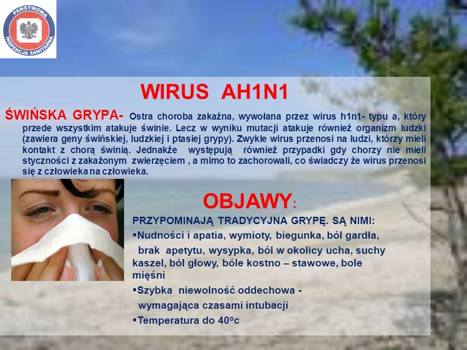 WIRUS AH1N1