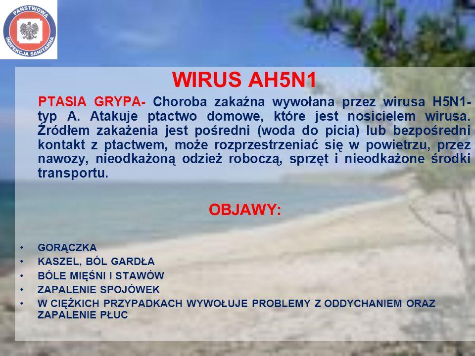 WIRUS AH5N1