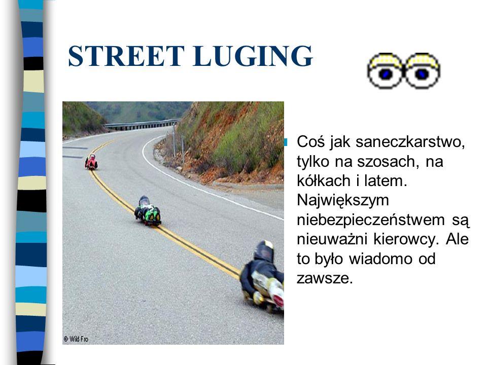 STREET LUGING
