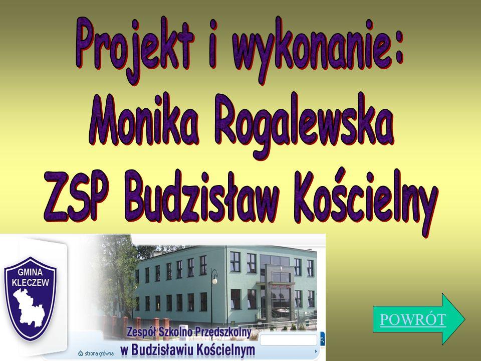 ZSP Budzisław Kościelny