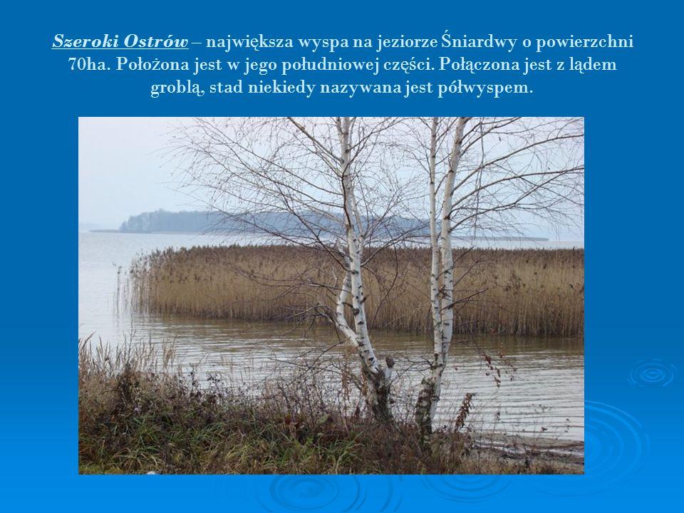 Szeroki Ostrów – największa wyspa na jeziorze Śniardwy o powierzchni 70ha.