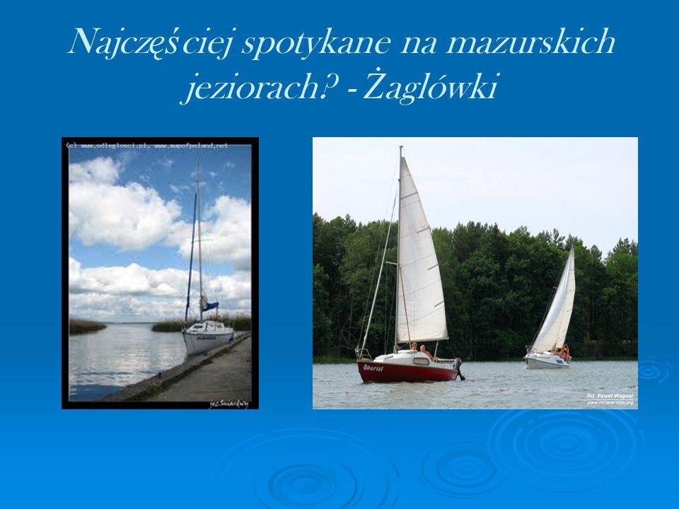 Najczęściej spotykane na mazurskich jeziorach - Żaglówki