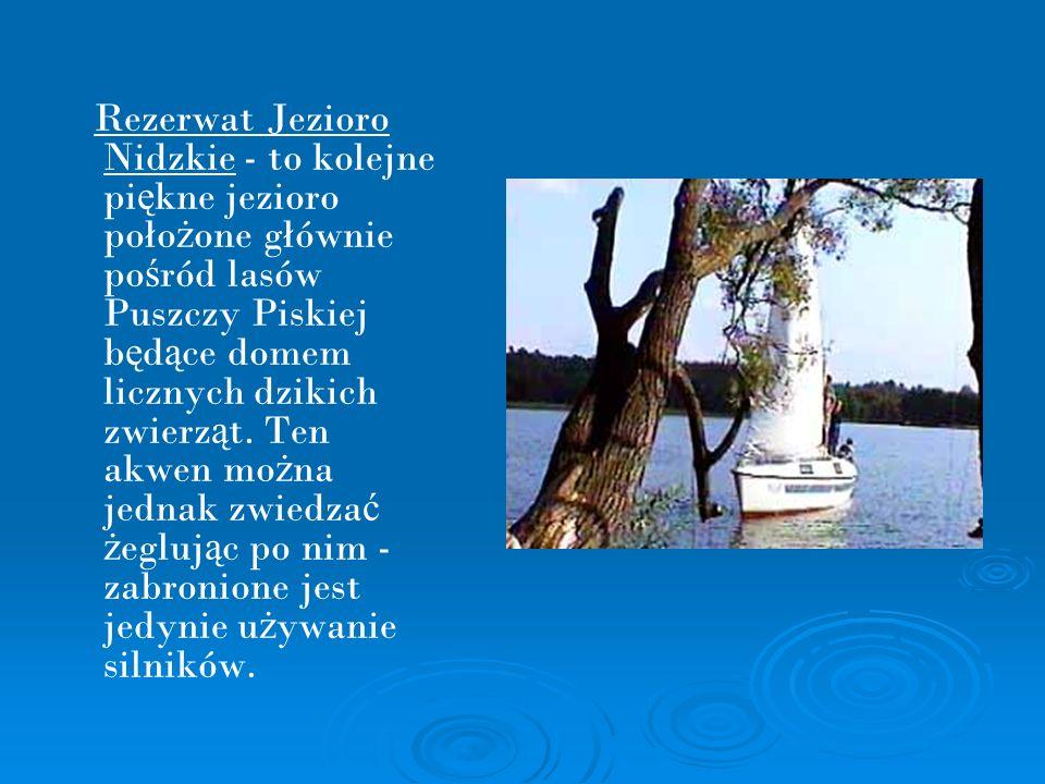 Rezerwat Jezioro Nidzkie - to kolejne piękne jezioro położone głównie pośród lasów Puszczy Piskiej będące domem licznych dzikich zwierząt.