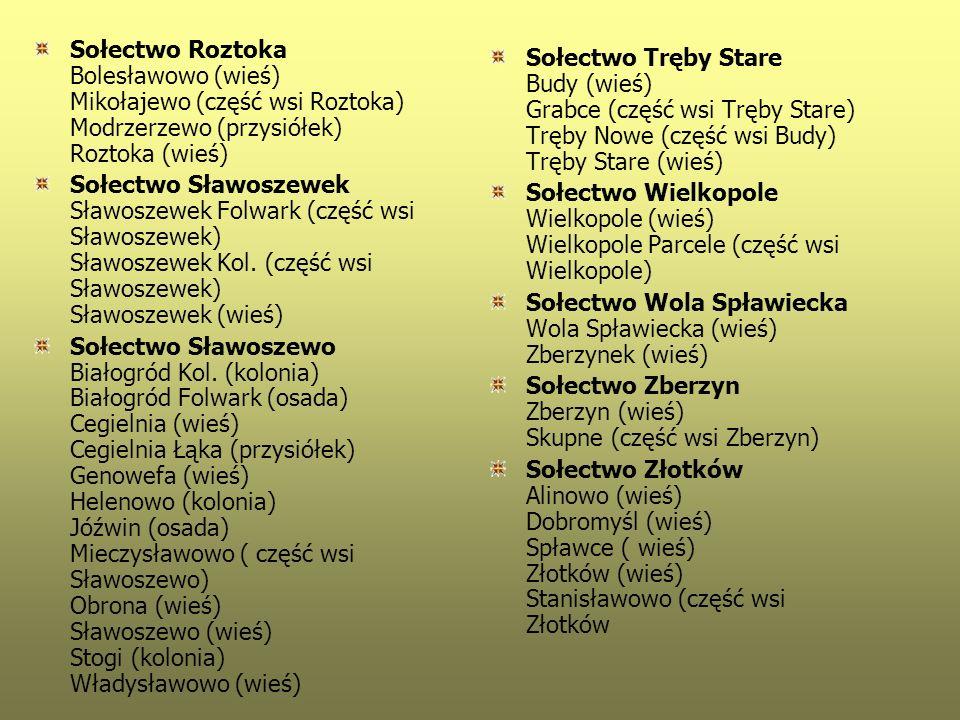 Sołectwo Roztoka Bolesławowo (wieś) Mikołajewo (część wsi Roztoka) Modrzerzewo (przysiółek) Roztoka (wieś)