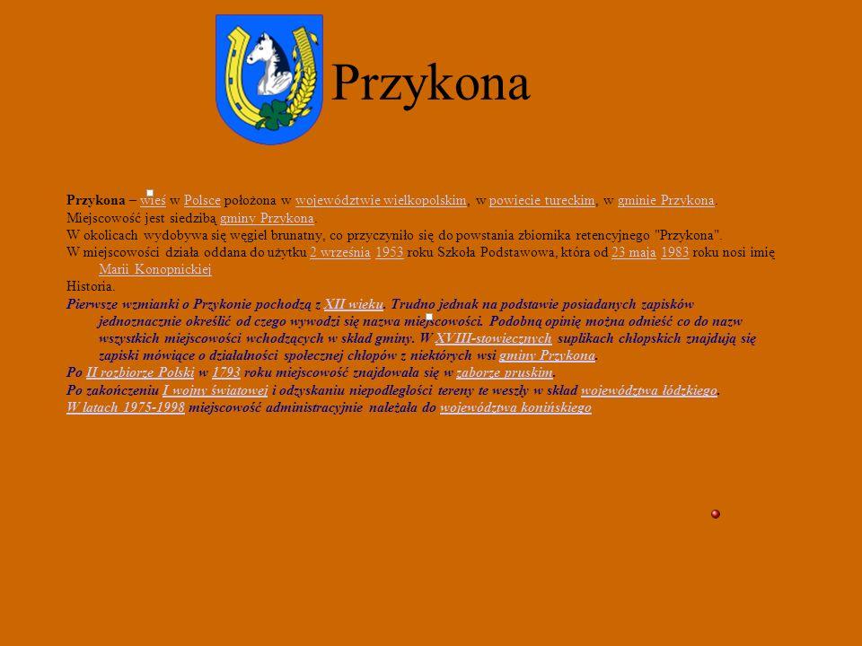 Przykona Przykona – wieś w Polsce położona w województwie wielkopolskim, w powiecie tureckim, w gminie Przykona.