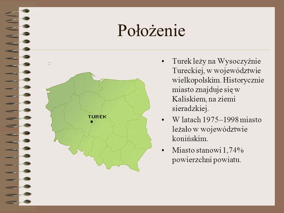 Położenie Turek leży na Wysoczyźnie Tureckiej, w województwie wielkopolskim. Historycznie miasto znajduje się w Kaliskiem, na ziemi sieradzkiej.