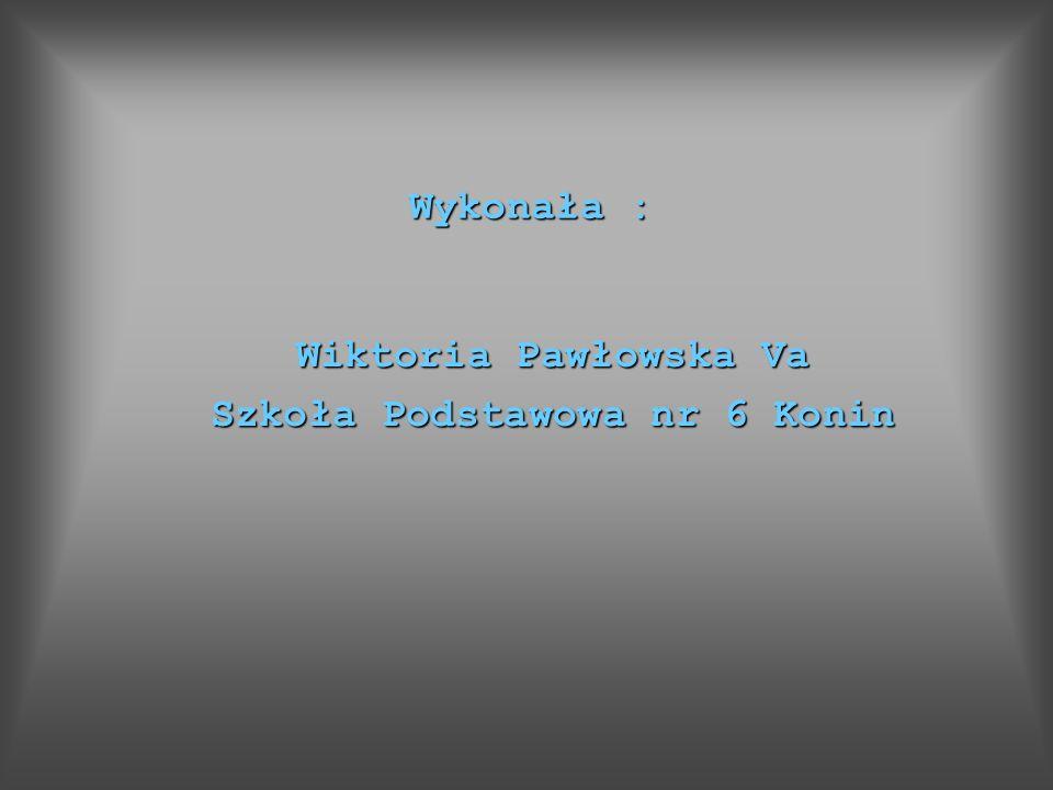 Wiktoria Pawłowska Va Szkoła Podstawowa nr 6 Konin