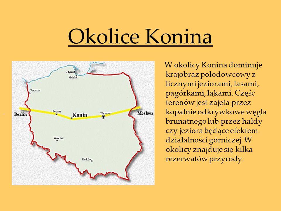 Okolice Konina