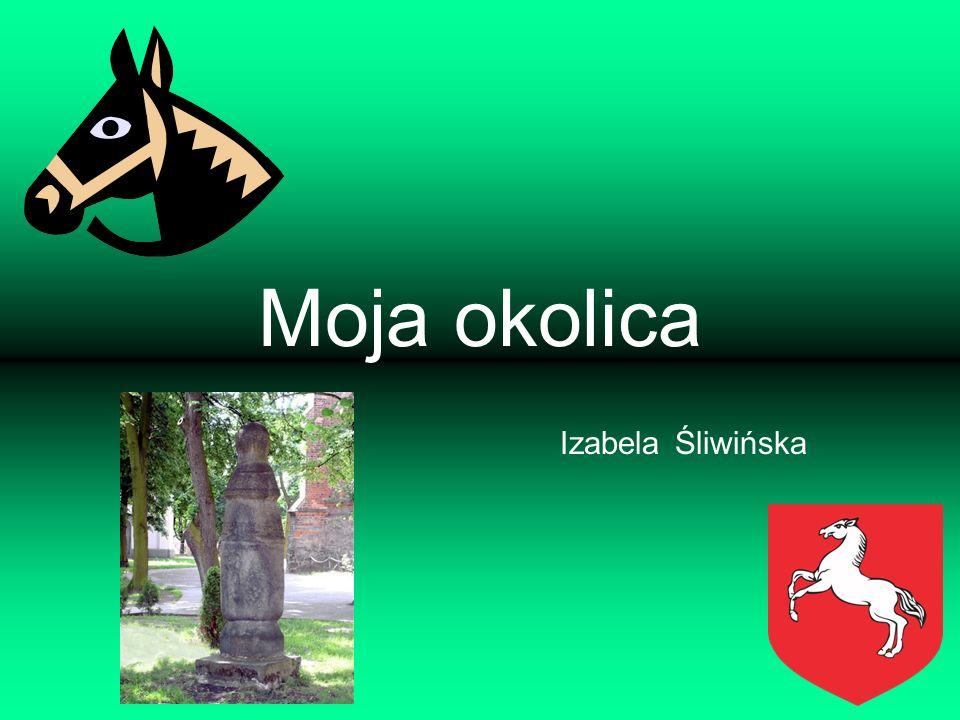 Moja okolica Izabela Śliwińska