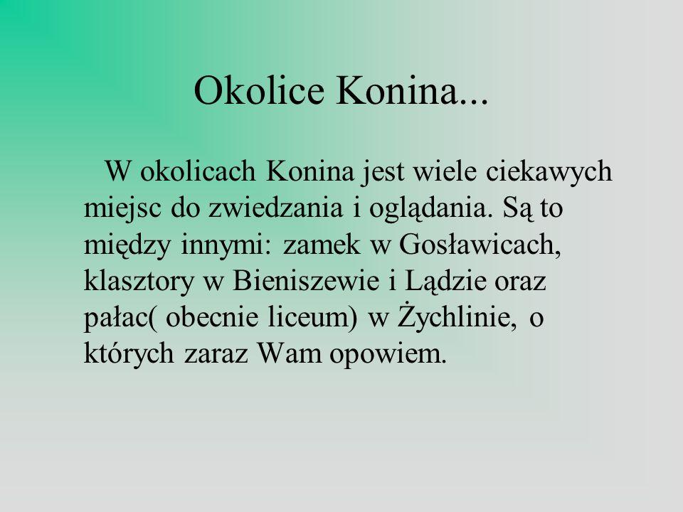 Okolice Konina...